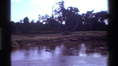 1983: a portion of a lake moves slowly past a stagnant portion MARA TANZANIA Stock Footage