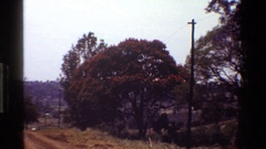 1983: hardwood tree with orange flowers in a field KENYA Stock Footage