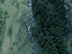 Epic landscape over forest and a river Stock Footage