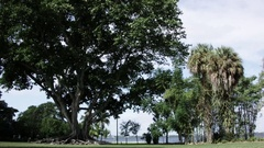 Edison Estate Fort Myers Stock Footage