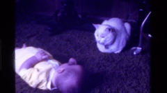 1975: a baby lays on the floor looking at a nearby cat CALIFORNIA Stock Footage