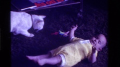 1975: toddle lying down pet walking along CALIFORNIA Stock Footage
