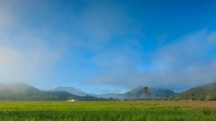 Time Lapse Rice Farm And Mist Floating Over Of Chiang mai, Thailand Stock Footage