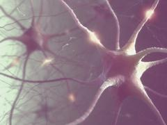 Neurons Electric Pulse Stock Illustration