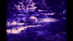 1975: creek flowing with whitewater AGATE SPRINGS MONTANA Stock Footage