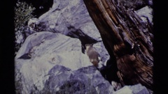 1975: boulder with log against it MINARET WILDERNESS CALIFORNIA Stock Footage