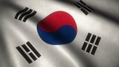 Flag of South Korea flying in the wind with high detailed fabric texture - .. Stock Footage