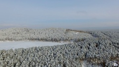 Aerial view of drone flying over lake and a forest at winter time Stock Footage