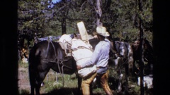 1973: cowboy unloads heavy load from horses back SCAPEGOAT WILDERNESS MONTANA Stock Footage