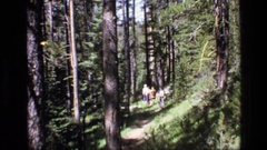1973: number of people are walking along the forest area with trees around Stock Footage