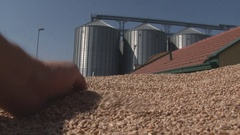 Wheat in the hand after harvest ,silos tank agriculture storage Stock Footage