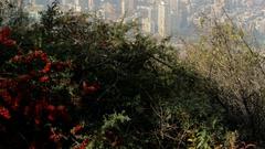 Nice Cityscape of Santiago de Chile. Stock Footage