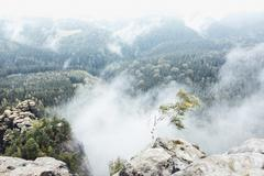 Scenic view of mountains in foggy weather, Saxon Switzerland National Park, Stock Photos