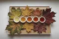 Directly above shot of herbal tea cups surrounded with dry maple leaves in tray Stock Photos