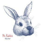 Vector portrait of a rabbit Stock Illustration