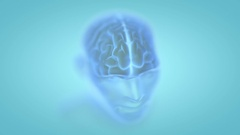 Transparent human male head with visible brain revolving in 3d space Stock Footage