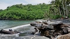 Secret Beach Tree Nusa Penida Bay Slowmotion Stock Footage