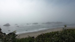 Fog over ocean in Pacific Northwest Stock Footage