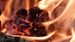 Fireplace wood flames ash close up macro slowmotion Stock Footage