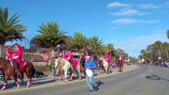 Horses in the St Augustine winter Parade Stock Footage