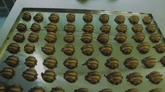The finished cookies with cocoa confectionery sheet Stock Footage
