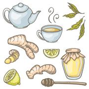 Set of hand drawn ginger tea elements. Vector illustration Stock Illustration