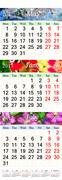 Calendar for May June July 2017 with pictures Stock Illustration