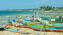 The Time-lapse of the large fisheries harbor, full of colorful catamaran-boats Stock Footage