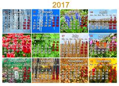 Calendar for 2017 in English with twelve photo of nature Stock Illustration