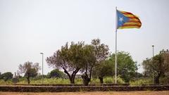 Spain Catalonia Fag Stock Footage