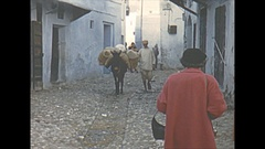 Vintage 16mm film, 1954 Morroco Tetuan streetlife, cargo mule Stock Footage