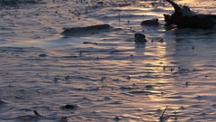 Frozen Inlet, A frozen body of water. Stock Footage