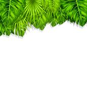 Natural Frame with Green Tropical Leaves Stock Illustration
