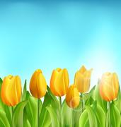 Nature Floral Background with Tulips Flowers and Blue Sky Stock Illustration