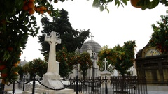 Tombs in a graveyard surrounded by trees on a sunny day Stock Footage