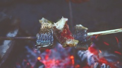 Fry the fish on the fire. Close up. Vignette color Stock Footage