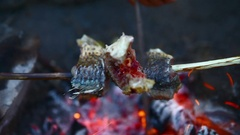 Fry the fish on the fire. Close up. No color correction Stock Footage