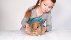 Girl plays and cuddles with rabbit Stock Footage