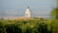 Chapel with vineyard near Velke Bilovice, Moravia, Czech Republic, EU, Europe. Stock Footage
