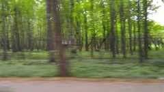 Green forest with fence from window of driving car, mobile phone video. Stock Footage