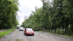Two car driving round tree falling to road in storm on street. Stock Footage