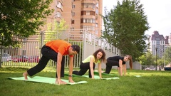 Man and two women perform yoga position muzzle dog down together Stock Footage