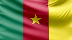 Realistic beautiful Cameroon flag looping Slow 4k resolution Stock Footage