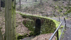 Bridge path over small lush forest waterfall creek, rocks with moss Stock Footage