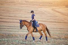 Portrait of equine sportswoman jumping on a hors Stock Photos