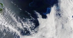 High-altitude overflight aerial of a phytoplankton bloom,  Tasman Sea, Australia Stock Footage