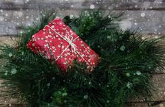Christmas gift on fir brunches Stock Photos