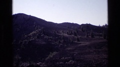 1972: short trees dot the landscape on a hilly terrain IDAHO Stock Footage