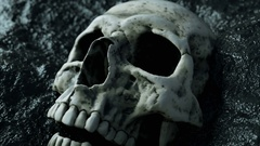 Ancient human skull. Apocalypse concept.realistic 4k animation Stock Footage