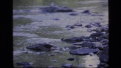 1973: nice view of running water SCAPEGOAT WILDERNESS MONTANA Stock Footage